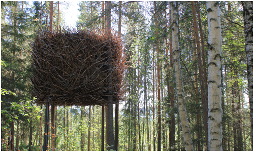 Treehouse, Sweden - Bird's Nest