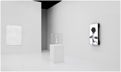 Tokujin Yoshioka design a vivre ROSE 03