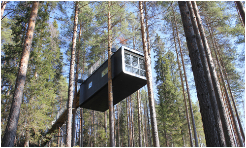 Treehouse, Sweden - The Cabin